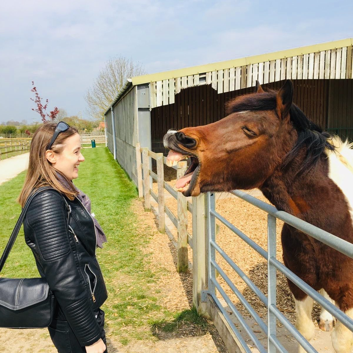 Wendy with horse